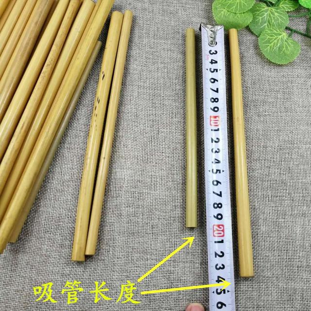 4 or6PCS Natural Bamboo Straw Set Eco Friendly Bamboo Straw Reusable Drinking Straws with Straw Case Clean Brush 8 or 9inches 3