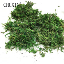 50g/bag Green Moss Dry Real Silk Flower Wedding Plants Vase l Turf  Accessories For Flowerpot Decoration Dry Moss