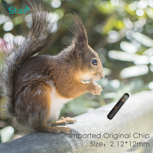 Image 5 - 40pcs ISO RFID Chip 2*12mm Plastic Injector Animal Id Tag Pet Microchips Syringe
