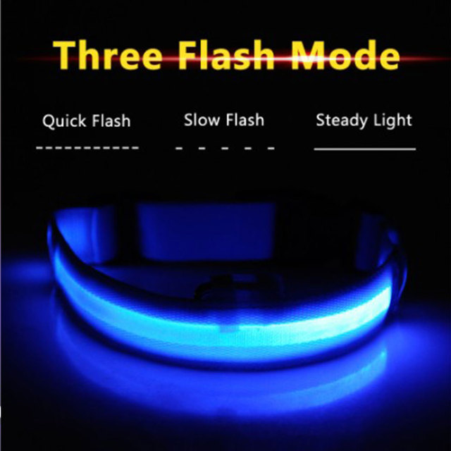 Night Time Safety Luminous Pet Collar with LED Flash- A Pets Alpha Pet Owner Pleaser ʕ•́ᴥ•̀ʔっ 4