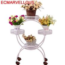 Shirley iron multi floor folding flower balcony European indoor green bt special offer shelf living room