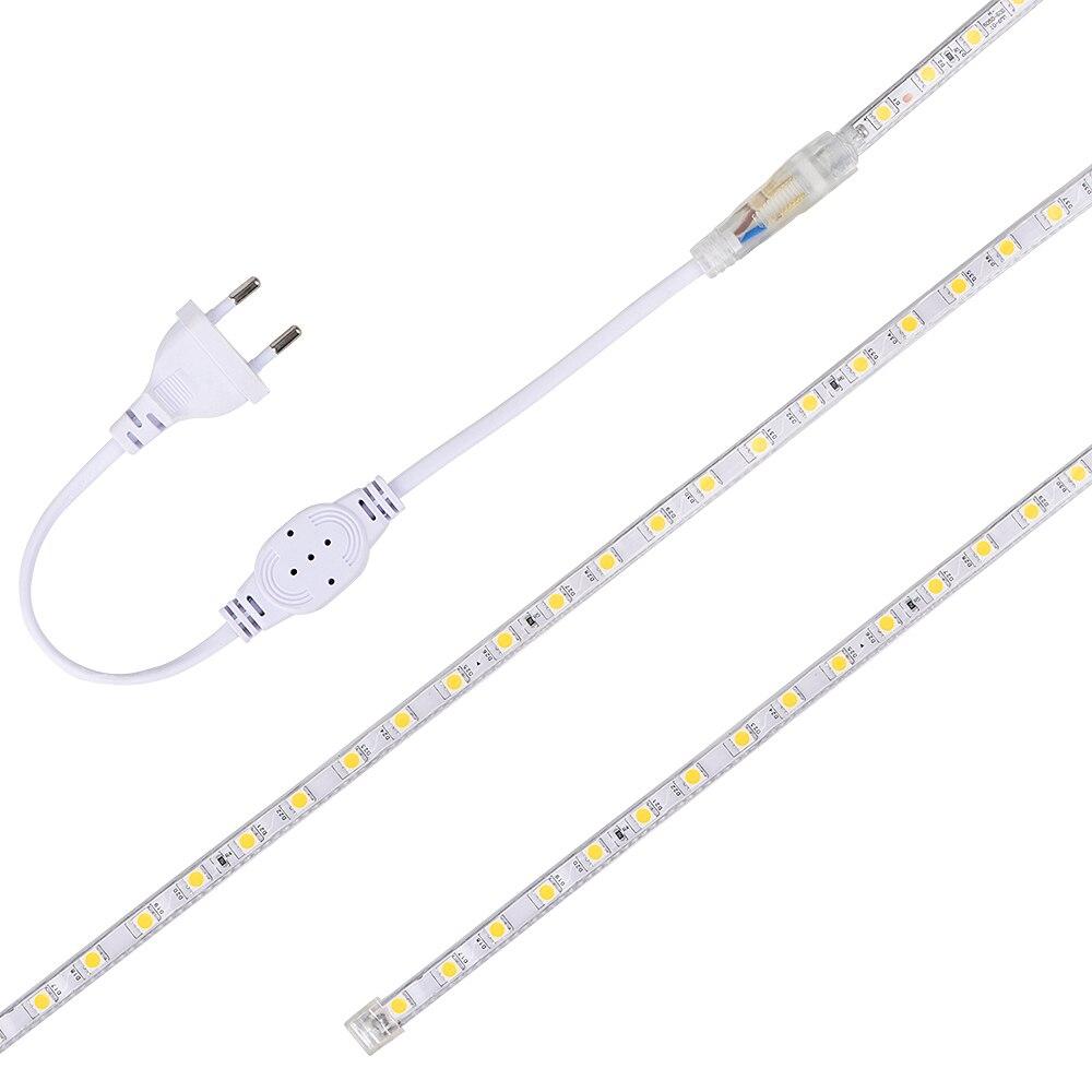 SMD 5050 LED bande 220V Flexible LED bande lumières extérieur étanche IP65 LED bande lumière Dimmable avec télécommande 70m 80m 90m 100m