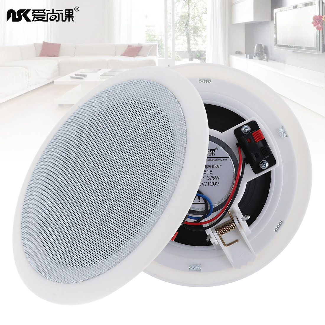 ASK-515 2pcs 5 Inch 5W Microphone Input USB MP3 Player Ceiling Speaker Background Music Speaker for Home/Supermarket/Restaurant