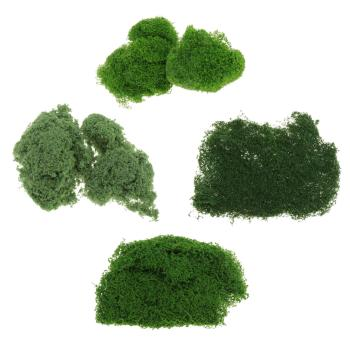Artificial Everlasting Moss Plant Eternal Moss Grass Garden Home Decor DIY Flower Material Garden Micro Landscape Accessories image