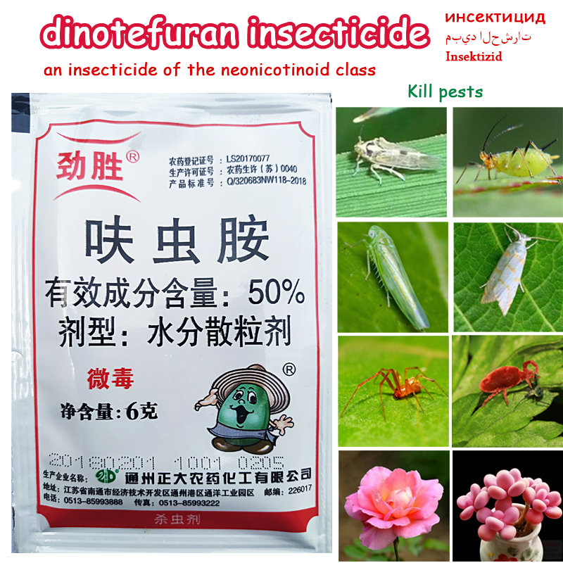 Dinotefuran An Insecticide Neonicotinoid Kill Insect Pest Aphids Whiteflies Agricultural Medicine Pesticide Garden Bonsai Plant