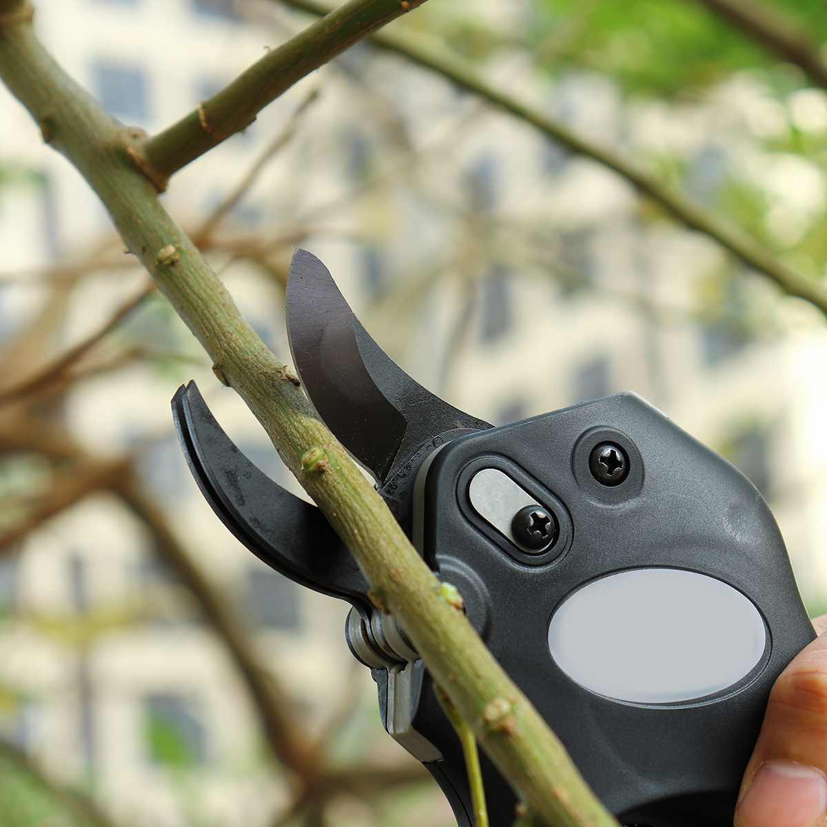 12V Wireless Electric Rechargeable Garden Scissors for Pruning Branches and stems with 4 Li-ion Battery 17