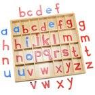 Montessori Language ...