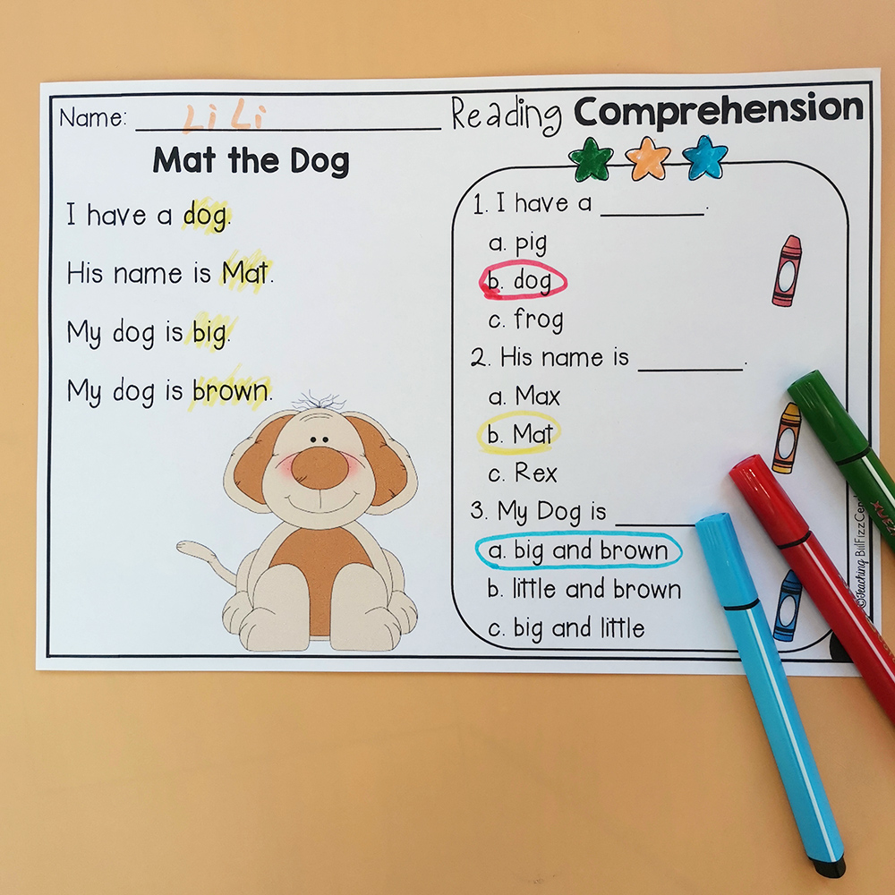 Reading Comprehension Colorful Exercise Learn English Workbook Educational Exercise Training Book For Kids Montessori Materials