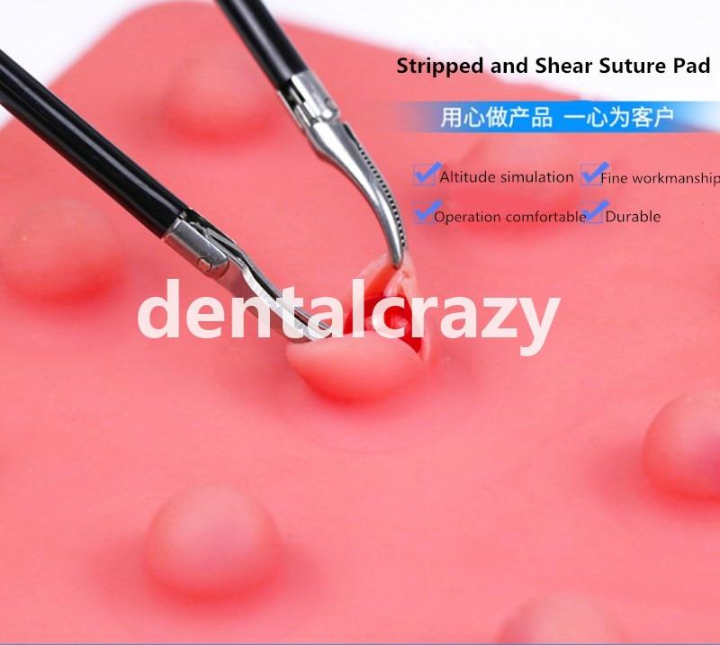 traumaticos esqueleto anatomia treinamento simulador dental almofada sutura 05