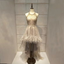 Dubai luxuri  Evening dress 2019new vestido de noiva abendkleider robe de soiree Halloween dress party