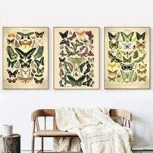 Mariposa francesa Vintage carteles e impresiones de insectos de la biología carta educativa cocina pared arte cuadro lienzo pintura decoración del hogar