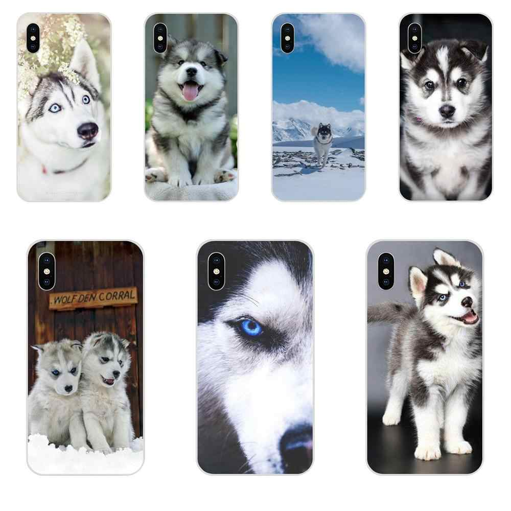 Animal Husky Pupp For Galaxy Alpha Note 10 Pro A10 A20 A20E A30 A40 A50 A60 A70 A80 A90 M10 M20 M30 M40 TPU Case Cover