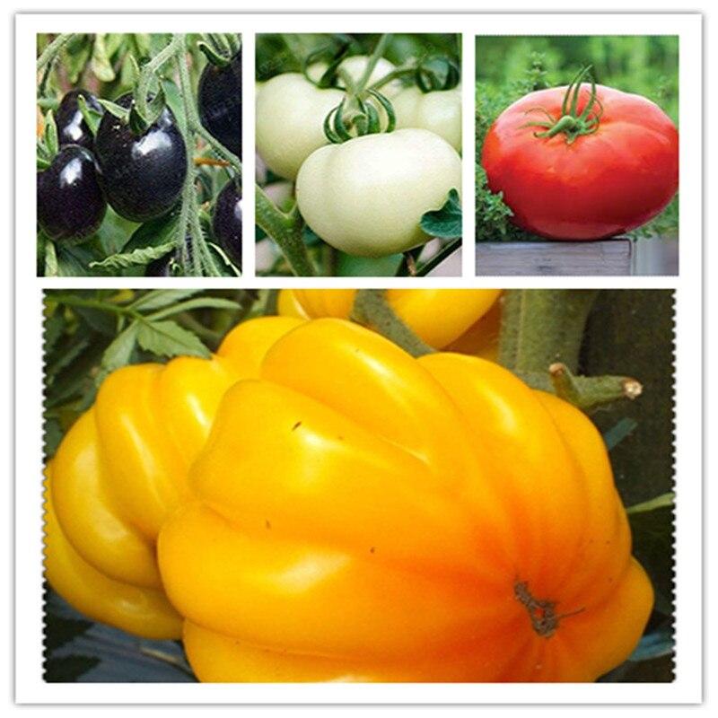 Organic Plant Bath Salts 110Pcs Big Tomato Essence AN-ZZ12-110