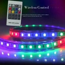 Remote Control 5050 RGB AC 220V 60 LED/m RGB Flexible LED Strip Light IP67 16 Colours Changing LED Rope Tape Light