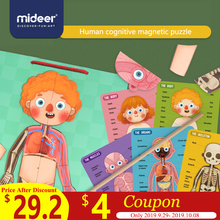 MiDeer Baby Puzzle Toys Magnetic Body 6Y+ Muscle Bone Structure Cognition Hanging board Education Creative Toys For Kids structure of bone