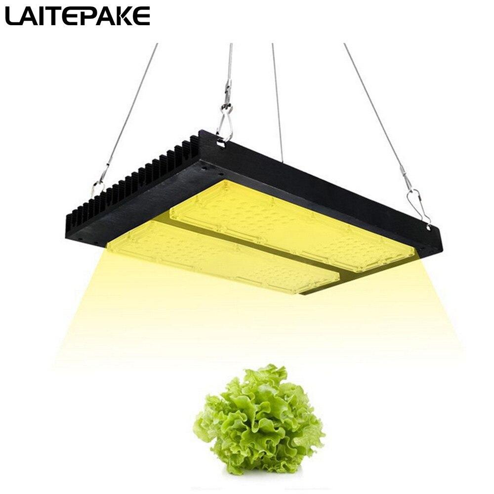 Super Lumen 40000lM 240W Led Grow Light Full Spectrum  3500K+460NM 220V For Grow Tent Plant Growth Light