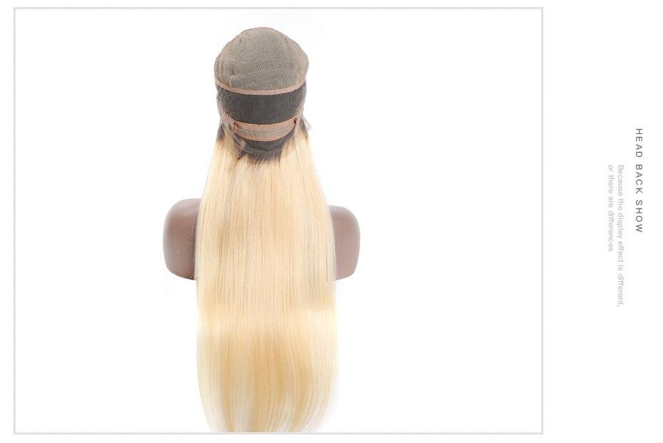 1b613 straight hair wig (3)