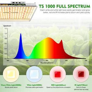 Image 4 - MarsHydro TS 1000W kısılabilir ışık büyümeye yol açtı tam spektrum kapalı bitki topraksız sistem büyümek çadır ve bitki yetiştirme lambaları paneli