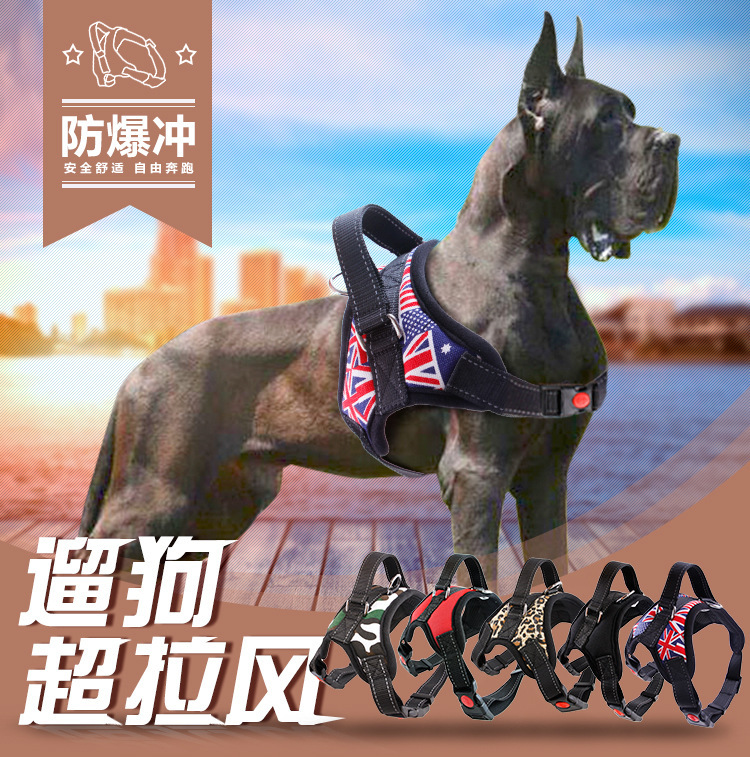 Dog New Style Bit Dogo Cane Corso Waterproof Material Canine Bully In Large Non-Telescopic Rope Chinlon Dog