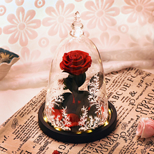 Ainyrose Beauty and The Beast Eternal Rose Red Artificial Flower In Glass Dome with LED Light for Valentine Mothers Day Gifts
