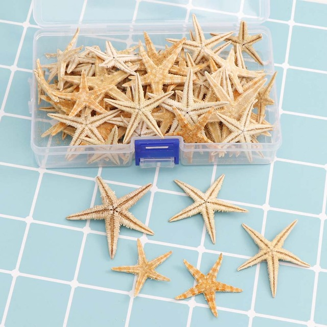 1 Box 1-5cm Natural Starfish Seashell Beach Craft Natural Sea Stars DIY Beach Wedding Decoration Crafts Home Decor Epoxy 2