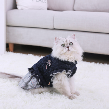 Cat Knitted Dress  3