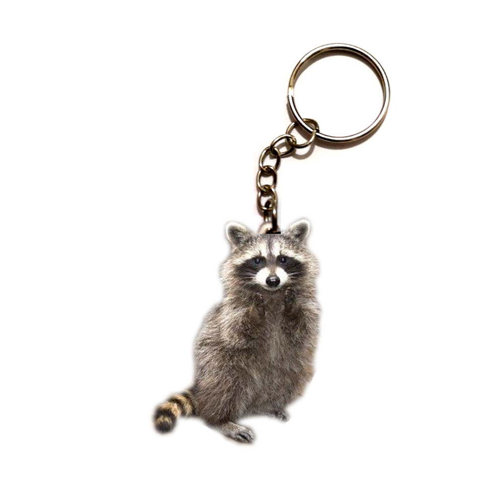 Cute Raccoon Acrylic Keychain Flying Wing Dogs Silver Keyring Pendants Gift Best Friend Key Chain Accessories Keyring Men Toy