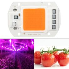 LED Grow COB Chip Phyto Lamp Full Spectrum AC110V 220V 20W 30W 50W For Indoor Plant Seedling Grow and Flower Growth Lamp led cob 50w 220v waterproof driver free ic driver full spectrum to promote plant growth lamp with u slot type reflective groove
