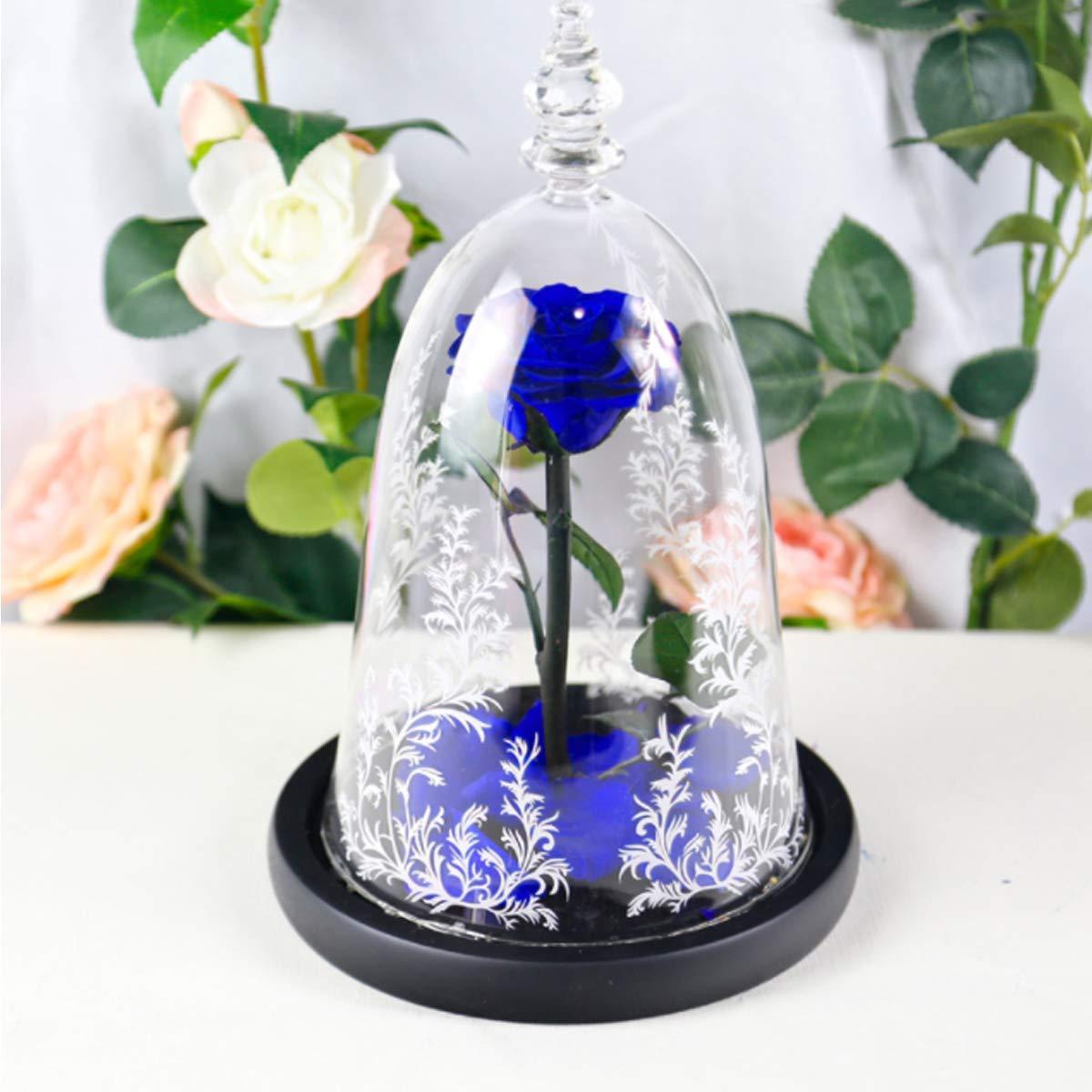 6 стилей,, свежие цветы красавицы и чудовища, красные вечные розы в стеклянном куполе, Рождественский подарок на день Святого Валентина, Прямая поставка - Цвет: Dark blue rose