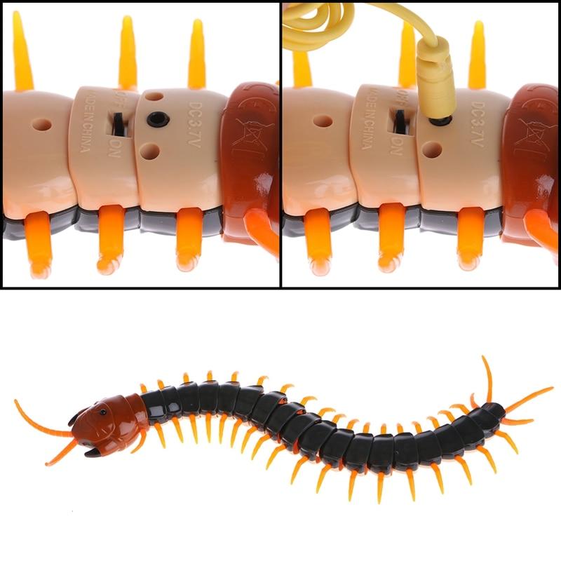 controle remoto centipede animal creepy crawly prank engracado 04