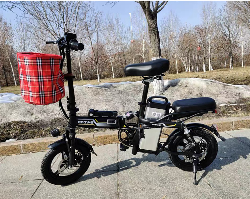 Mini Electric Bike  6
