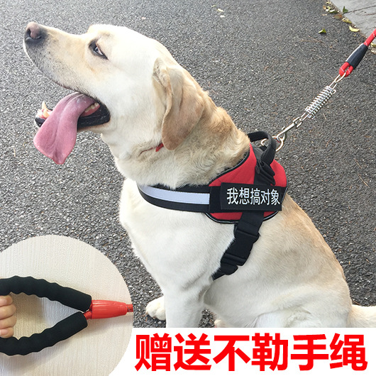 Golden Retriever-Dog Hand Holding Rope Proof Punch Vest Satsuma Labrador Medium Large Dog Dog Chain Puppy Neck Ring
