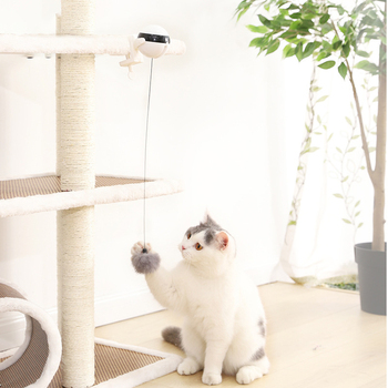 Electric Automatic Lifting Cat Ball Toy Interactive 2