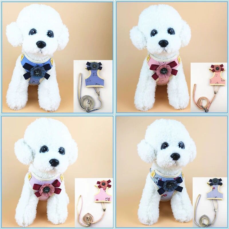 Korean Style Chest And Back Volumes 2 And 3-Shape Hand Holding Rope Pet Dog Dog Supplies Dog Rope String Bag Breathable Chest An