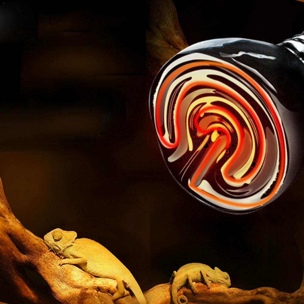 Far Infrared Pet Heating Lamp Ceramic Pet Heating Lamp Light Bulb Pet Brooder Chickens Reptile Lamp 25W 50W 75W 100W Heat Shield