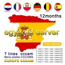 Egygold CCAM receptor de TV Cable AV Cable de línea en Europa cline egygold 7 líneas Freesat ccam cline para DVB-S2 Gtmedia v8 n