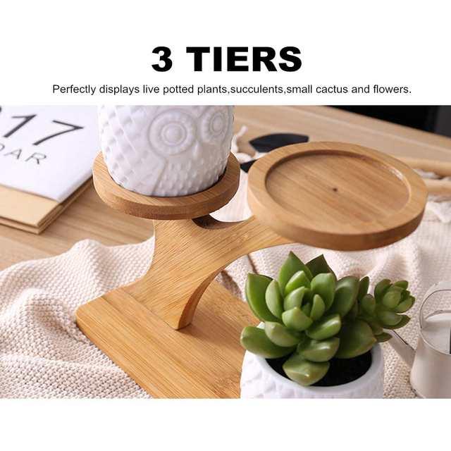 2 Styles Ceramic Succulent Pots Garden Planter for Plants Bonsai Pot Bamboo Plants Stand Sets 4