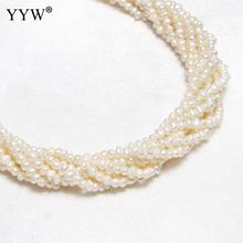Whole Sale! 2mm White Small Loose Pearl Beads Cultured Potato Freshwater Pearl Beads Rice Jewelry Making Bead 0.8mm 15.7 Inch