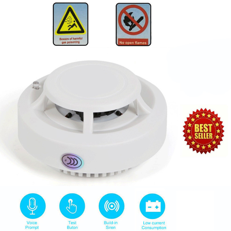 Smoke Alarm CO Carbon Monoxide Detector Poisoning Gas Warning Sensor Monitor