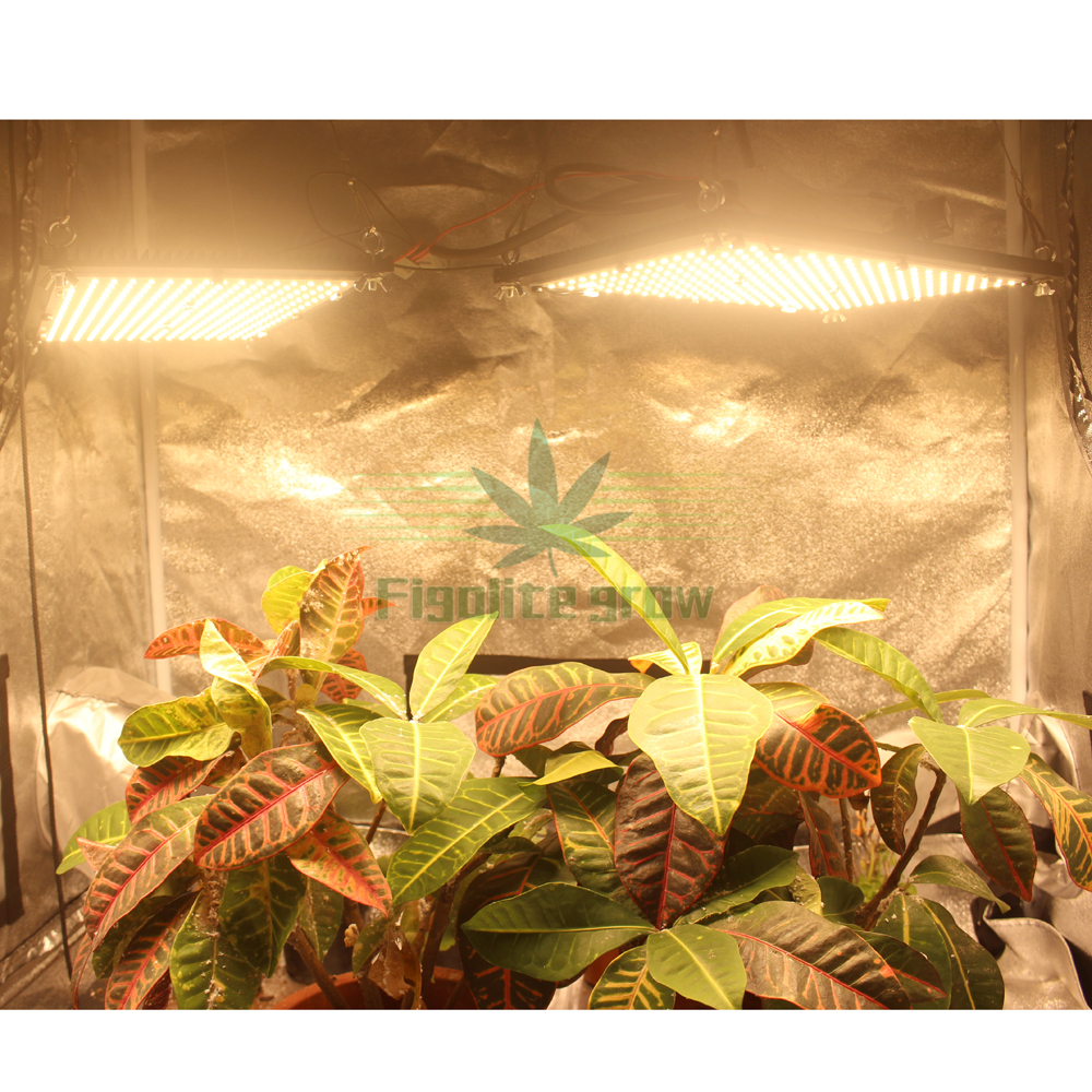 240w Quantum Board With 2 Heat Sinks Led Grow Light Samsung LM301B/301H Mix660 UV IR With Meanwell Driver, 5 Years Warranty