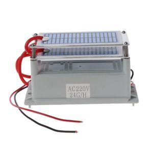 Image 5 - 220V 24g/5g Ozone Generator Integrated Ceramic Plate Ozonizer Air Water Sterilization Purifier for Dryer Dishwasher Refrigerator