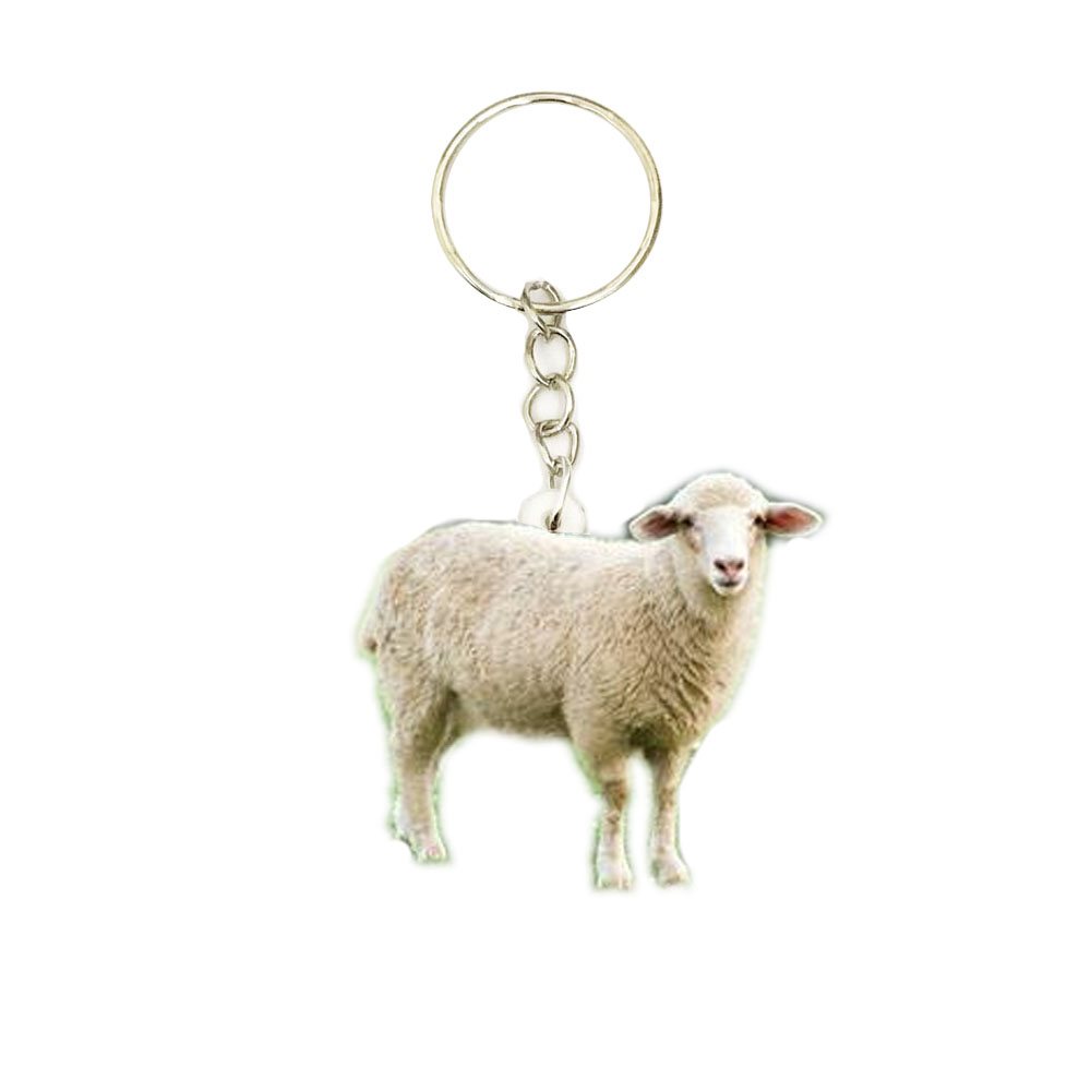 White Sheep Acrylic Keychain Flying Wing Keyring Pendants Gift Best Friend Chain Accessories Keyring Men Toy Mass Effect Women Key Chains Aliexpress