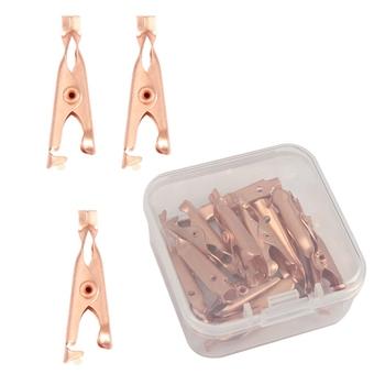 1 Box 12 sztuk miedzi narzędzie do usuwania zabezpieczeń skóry klipy brodawki Tag ekstraktor miedzi Tag Out narzędzie do usuwania skóry Tag tanie i dobre opinie FGHGF do czyszczenia twarzy CN (pochodzenie) akumulator Akrylowe