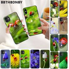Telefoon CaseFour Leaf Lieveheersbeestje Daisy Cove Zwarte Soft Shell Telefoon Cover voor iPhone 11 pro XS MAX 8 7 6 6S Plus X 5 5S SE XR case(China)