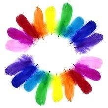Colorful Plume Wedding-Party-Decoration Crafts Diy Natural Wholesale for 50pcs/Lot 8-12cm
