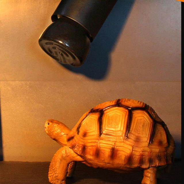 Far Infrared Pet Heating Lamp Ceramic Pet Heating Lamp Light Bulb Pet Brooder Chickens Reptile Lamp 25W 50W 75W 100W 2
