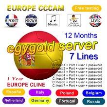 One year working in Europe egygold server 7 lines cccam for  V7 V8 DVB-S2 decoder Spain HD satellite TV receiver security in sap netweaver 7 0 application server abap