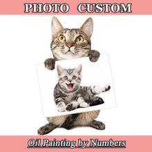 Картина маслом по номерам для портрета свадьбы семьи Фото Домашних