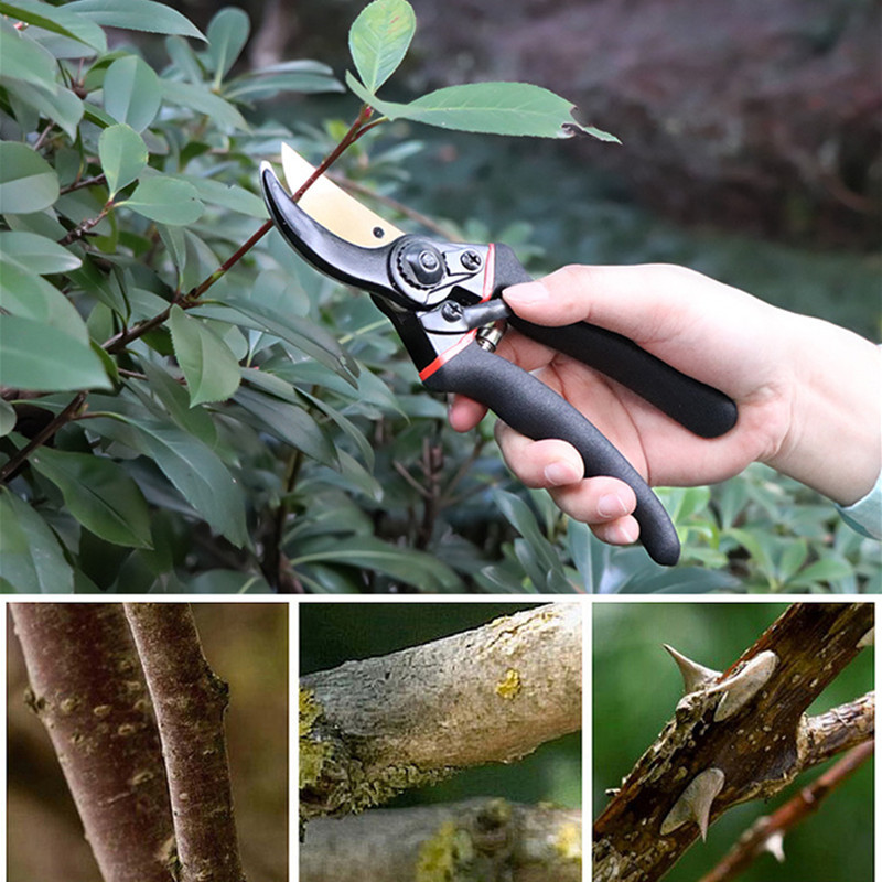 Professional Pruning Shears Titanium Secateurs Bypass Pruner Hand Gardening Plant Scissor Branch Trimmer Tools