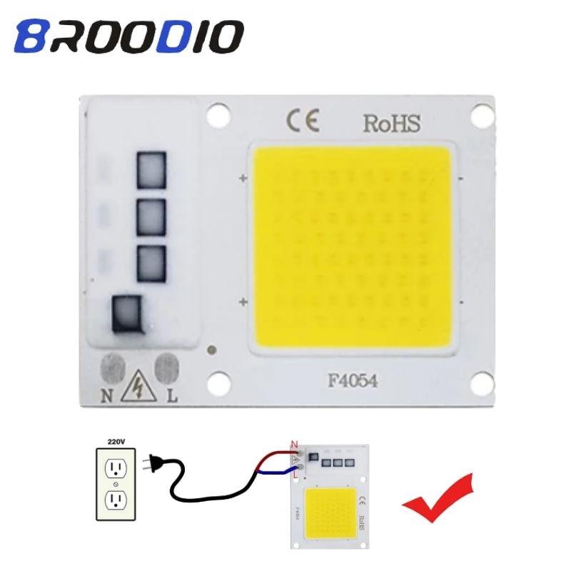 LED Lamp Chip COB Smart IC Lighting LEDs Bulb AC 110V 220V 10W 20W 30W Warm White Lampada No Need Driver Flood Spotlight LED DIY